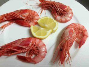 restaurante-marisqueria-valencia-islas-canarias-puerto-ciudad-artes-ciencias-gambas-3