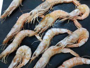 restaurante-marisqueria-valencia-islas-canarias-puerto-ciudad-artes-ciencias-langostinos